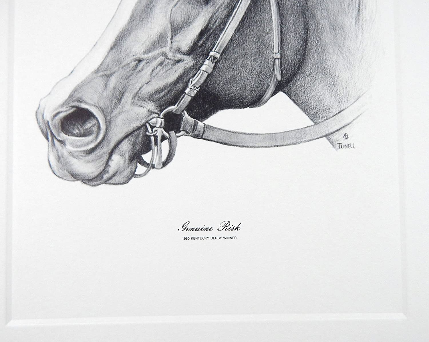Amazon Vintage 1980 Jack Tunell Genuine Risk Kentucky Derby Winner Talio Chrome Print Posters Prints