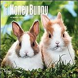 Honey Bunny Mini Calendar 2017 - Deluxe Small Wall Calendar (7x7)