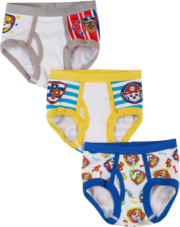 Boys Paw Patrol Briefs Kids Underwear Character Pants