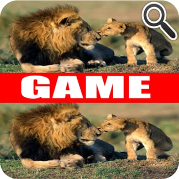 Wild Animals - Difference Games - Game App