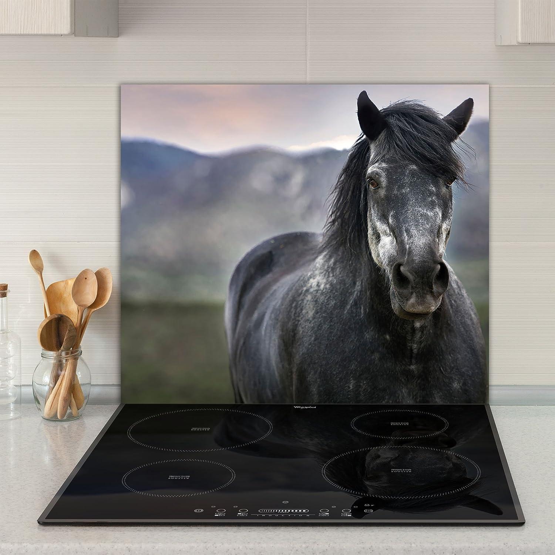 Herdabdeckplatten Abdeckplatten fü r Induktion Keramik Kochfeld gehä rtetem Glas Schneidebrett Kü chen Spritzschutz Ceranfeldabdeckung, 60 x 52cm, Motiv: Pferd Home Decor