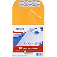 Mead Press-It Seal-It 6X9 Envelopes, Office Pack 30 Count (76084)
