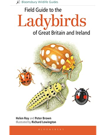 Insects & Spiders: Books: Amazon co uk