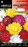Semillas Batlle 096601BOLS - Inmortal Siempreviva Flor de Papel variada