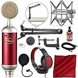 Blue Spark SL Large-Diaphragm Studio Condenser Microphone with Samson Microphone Boom Arm Stand, Closed-Back Headphones, and Platinum Bundle