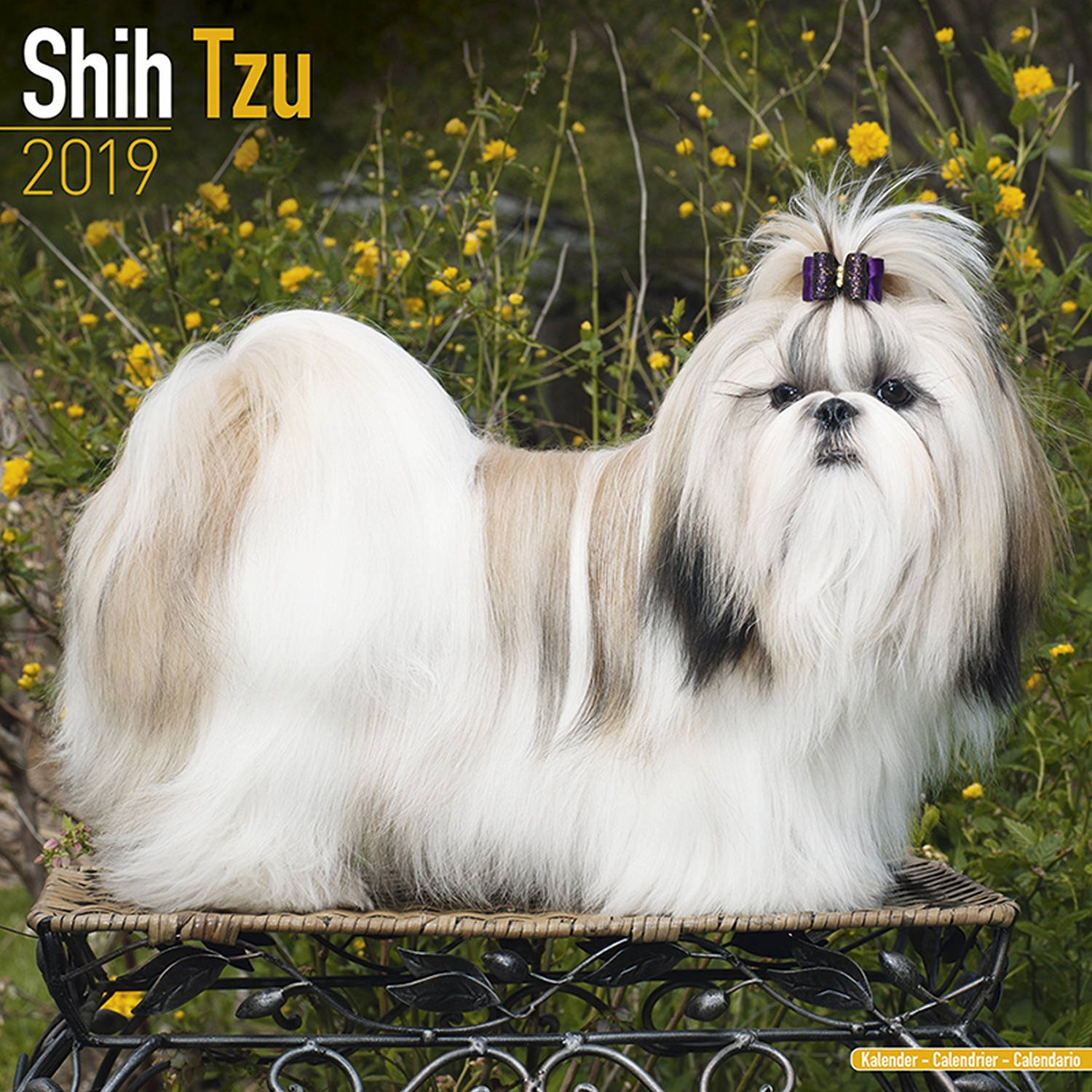 Shih Tzu Calendar Dog Breed Calendars 2018 2019 Wall Calendars