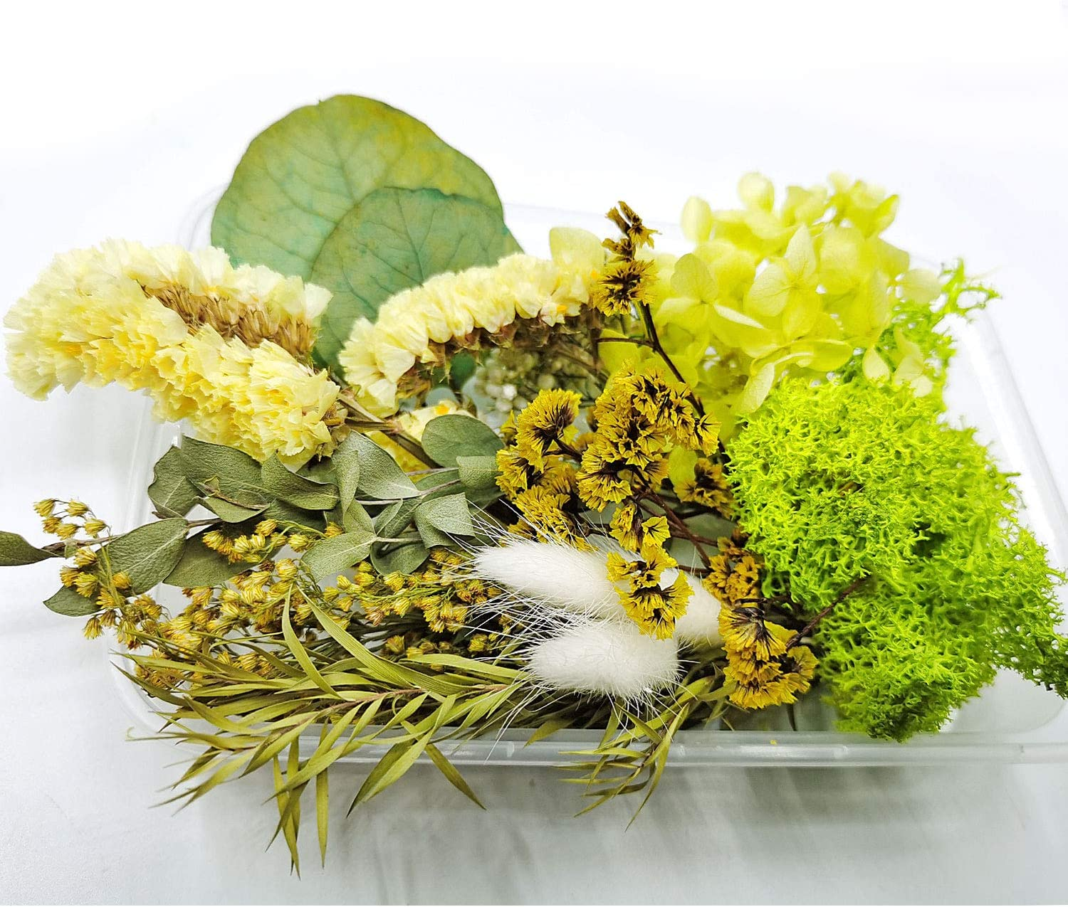 Light Yellow Dried Flowers Real Natural Dried Flowers for Art Craft Mixed Multiple Colorful Dried Flowers for Soap Candle Scrapbooking DIY Resin