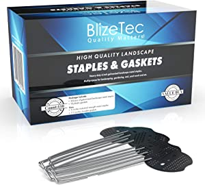 BlizeTec 100 6-Inch Galvanized Garden Landscape Metal Staples Pins and 10 Gaskets; Gardening, Yard Fabric, Paver Edging, Weed Barrier and Turf Work Friendly