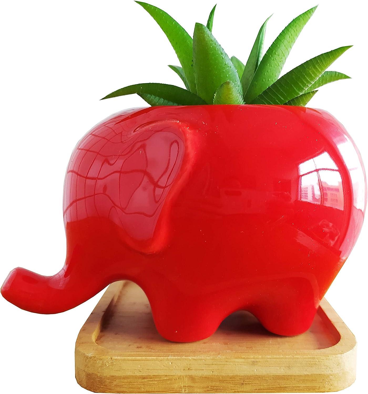 Cute Cartoon Animal Elephant Shaped Ceramic Succulent Cactus Vase Flower Pot (Red)