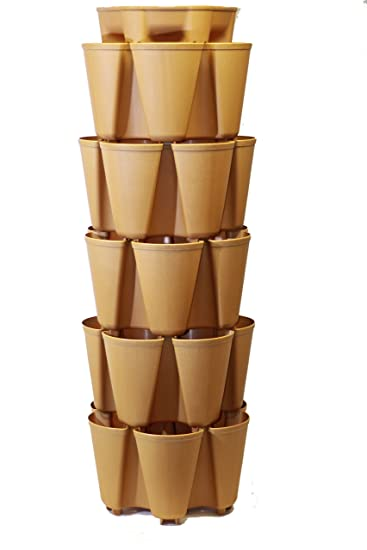 MAPLE GreenStalk Large 5 Tier Vertical Garden Planter With Patented  Internal Watering System Great For Growing
