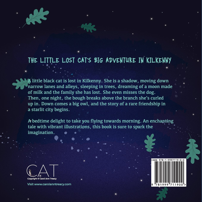 The Little Lost Cat's Big Adventure In Kilkenny: Carol Ann Treacy:  9781999711900: Amazon: Books