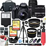 Canon T6 EOS Rebel DSLR Camera with EF-S 18-55mm f/3.5-5.6 IS II and EF 75-300mm f/4-5.6 III Lens and SanDisk Memory Cards (32GB & 64GB) Plus Triple Battery Accessory Bundle