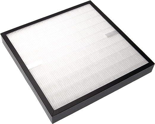 vhbw Filtro reemplaza DeLonghi 5513710011 para humidificador ...