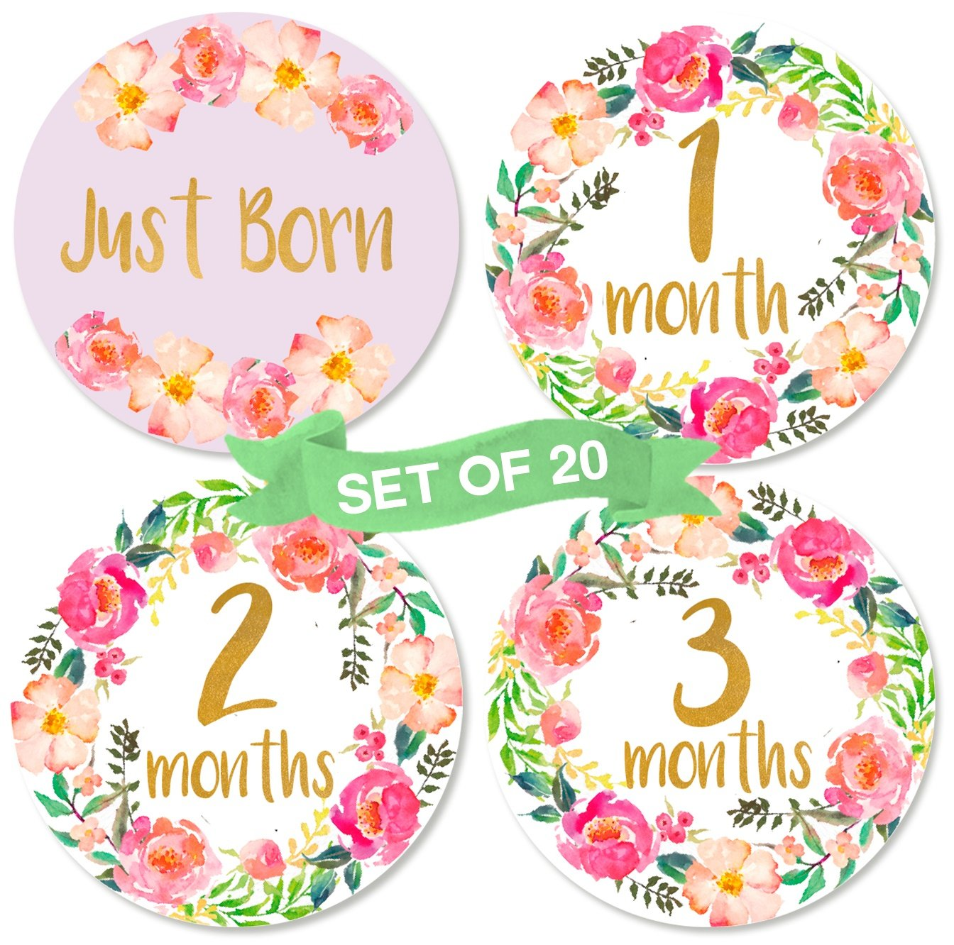 Coral Pink Baby Monthly Milestone Growth Stickers in Aqua Grey Dots Chevrons Nursery Theme MS119 Baby Shower Gift Baby Photo Prop