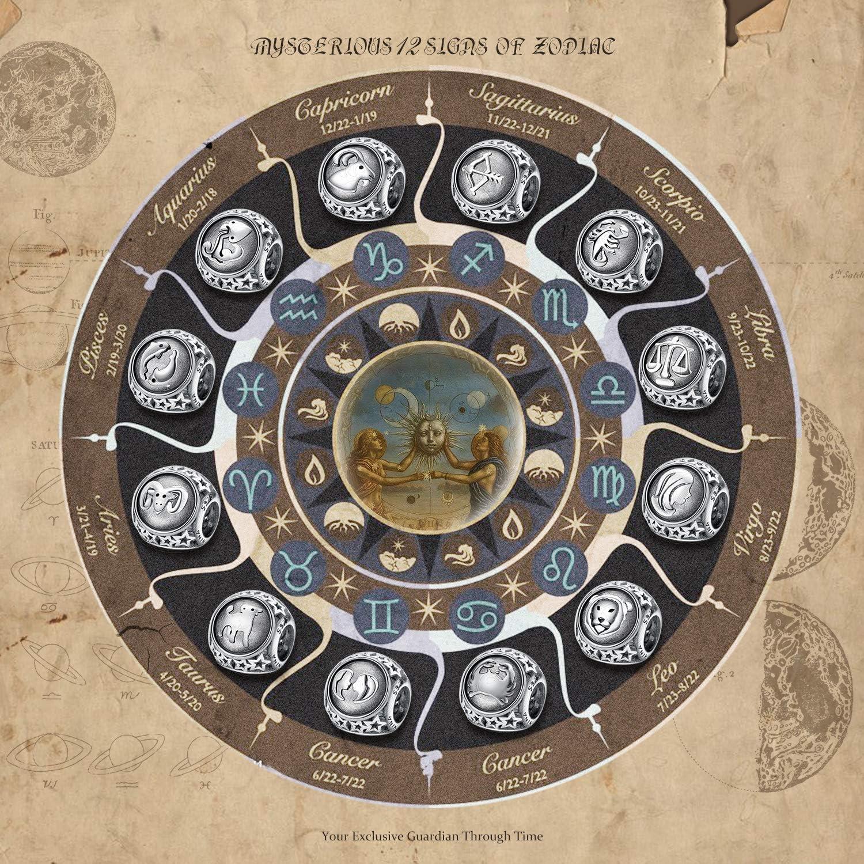 NINAQUEEN® Charms ~ 12 Segni dello Zodiaco ~ Argento Sterling 925, Distressed, con Confezione Regalo Scorpione