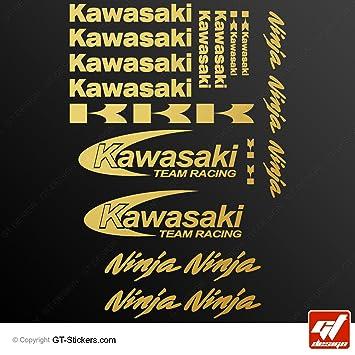 Kawasaki Ninja Racing Team Sticker Gold Pack Of 20 Self