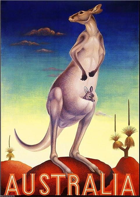 Amazon.com: Australia Kangaroo Madre y el bebé clásico Viaje ...
