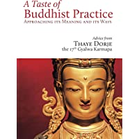 A Taste of Buddhist Practice: Approaching Its Meaning and Its Ways