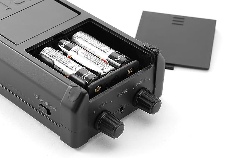 電池パネル