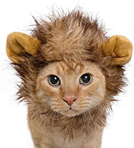 Pet Krewe Lion Mane Costume | Lion Costume for Small Cats Up To 15lbs