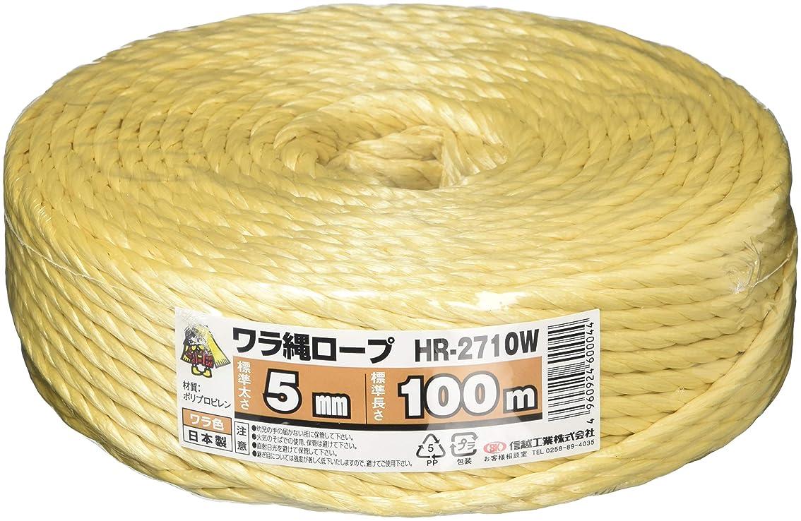 かるパノラマアブストラクトTenn Well 麻紐,ジュート 丈夫 ガーデニング ギフト 荷造り 梱包用 3本撚り麻いと 152m