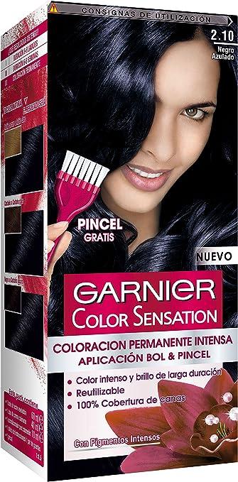 Garnier Color Sensation - Tinte Permanente Negro Azulado 2.10 ...
