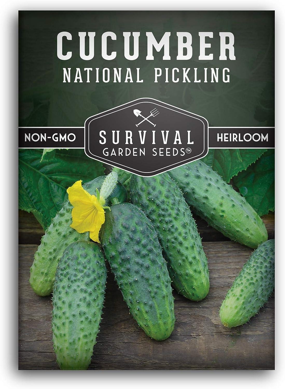 FARM /& VEGETABLE GARDENING HEIRLOOM HOMEMADE PICKLES CUCUMBER SEEDS NON-GMO