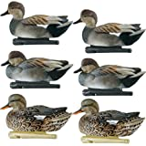 Avian-X Top Flight Gadwall Gray Duck Decoys 6 Pack