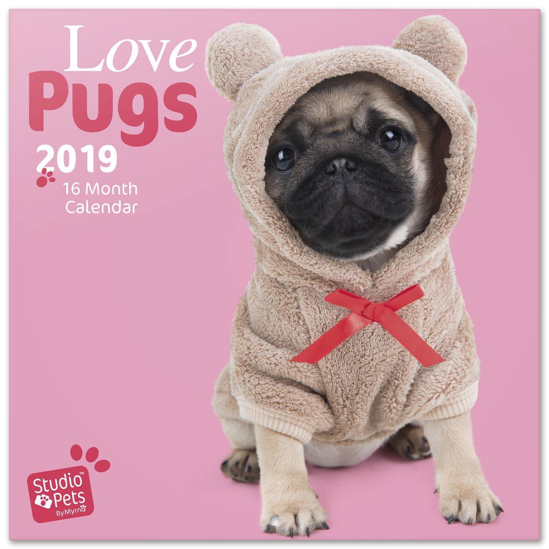 Grupo Erik Editores Studio Pets - Calendario 2019 Pugs, 30 x 30 cm CP19011
