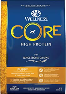 Wellness CORE Wholesome Grains Puppy Recipe, 12 Pound Bag
