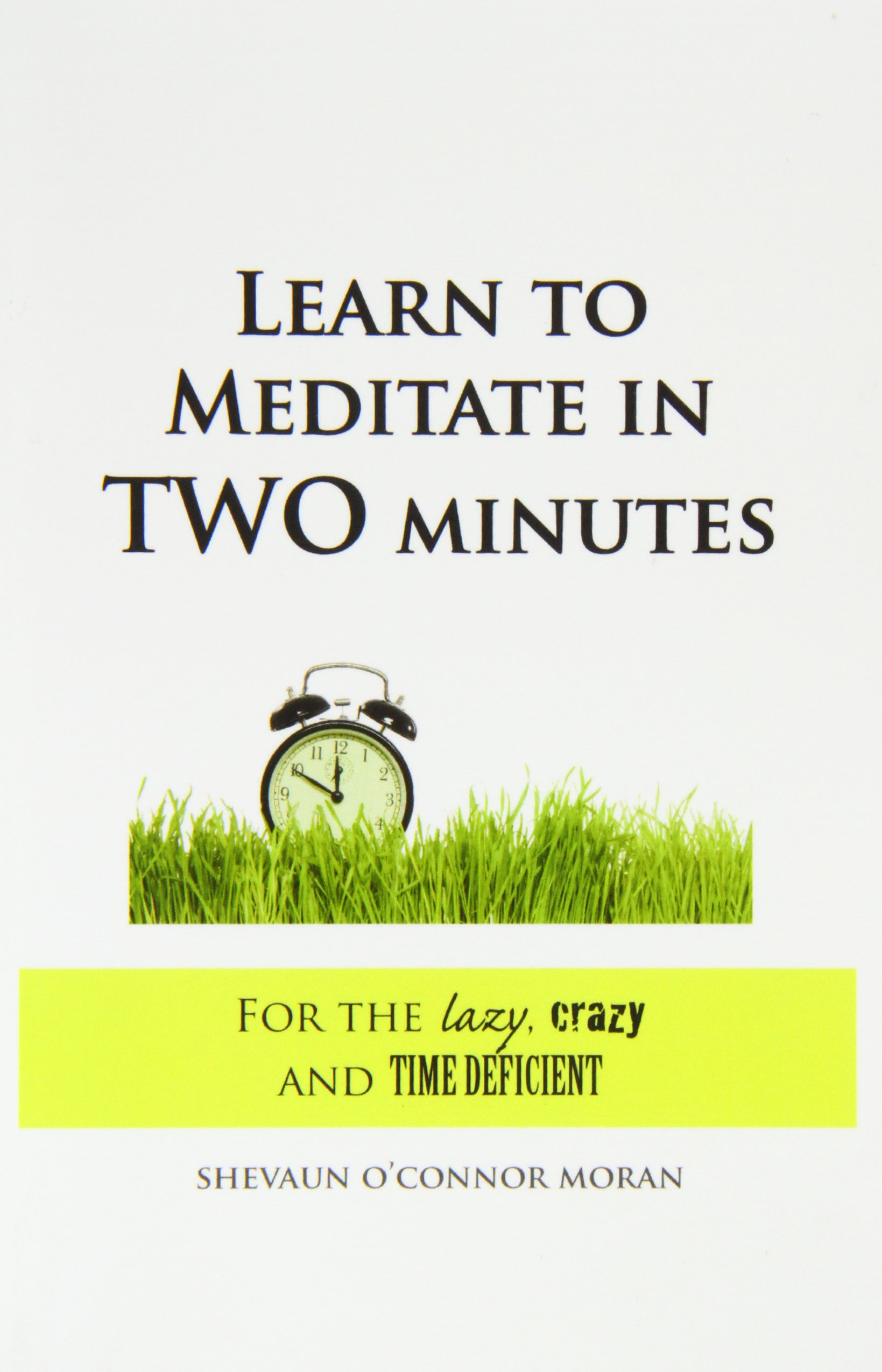 Download Learn to Meditate in 2 Minutes: For the Lazy, Crazy and Time Deficient ebook