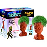 Chia Pet Groot, Guardians of the Galaxy Vol. 2 Decorative Pottery Planter, Easy to Do and Fun to Grow, Novelty Gift, Perfect for Any Occasion (Contains Packets for 3 Plantings)