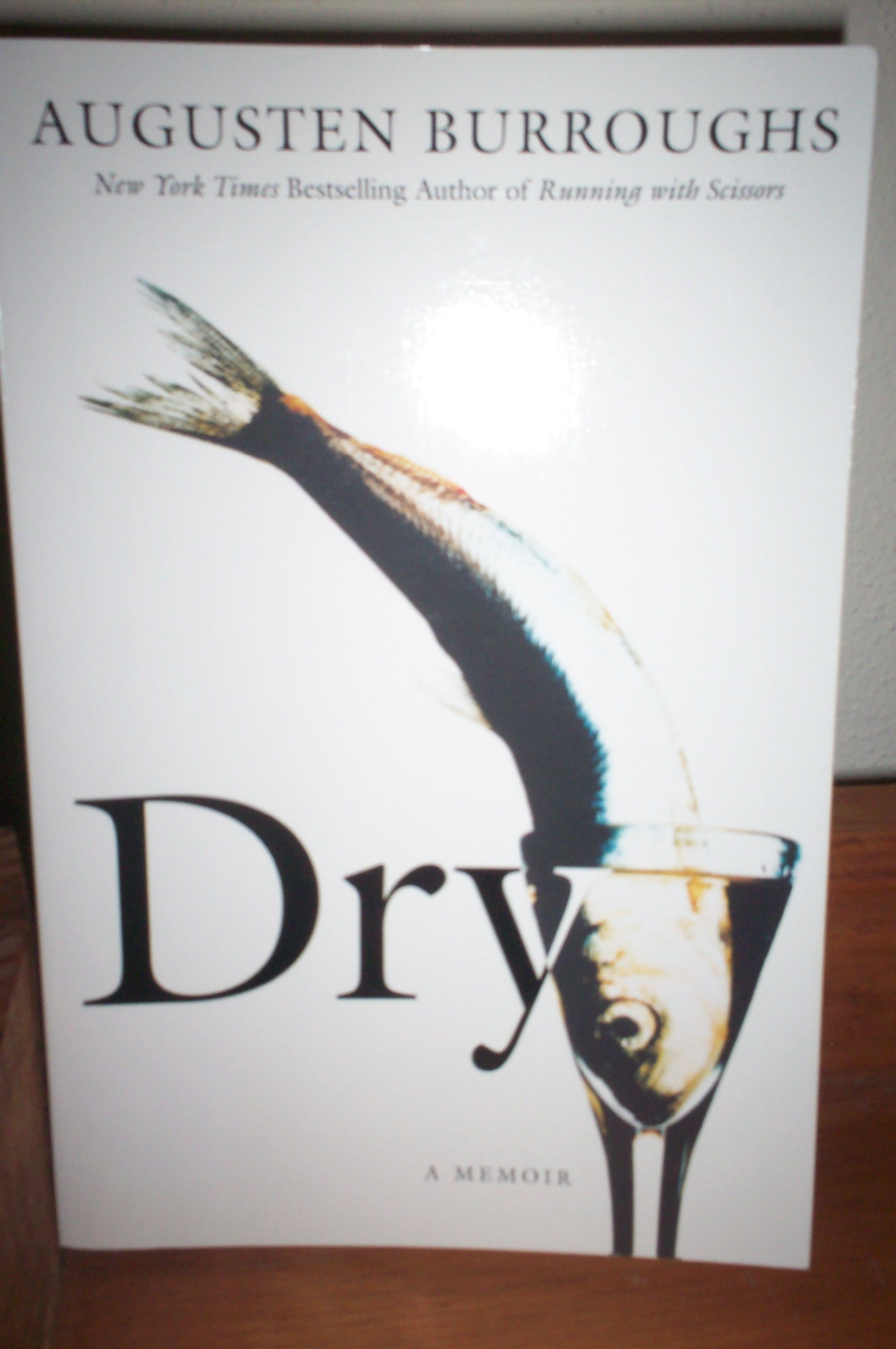 Dry:  A Memoir PDF Text fb2 book