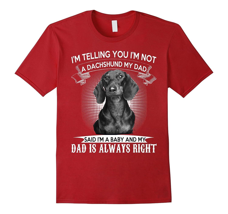 Dad Love Dachshund Tshirt