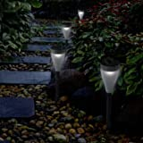 Aglaia Color Changing Solar Lights Outdoor, Pack of