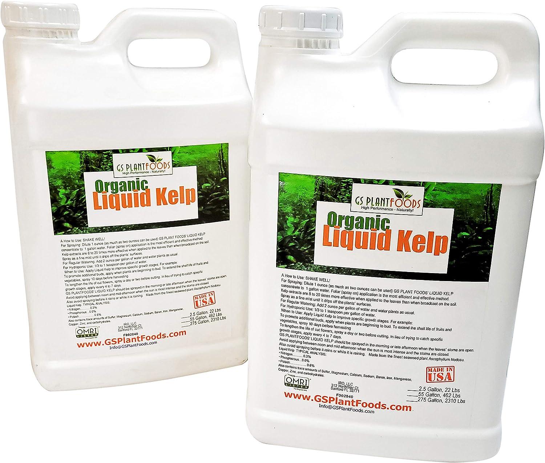 GS Plant Foods Organic Liquid Kelp Plant Fertilizer (5 Gallon) | Omri Organic Listed Seaweed & Kelp Fertilizer Solution | Kelp Seaweed Plant & Vegetable Growth Concentrate for Gardens, Lawns & Soil