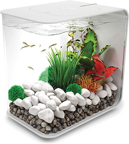 biOrb-Flow-4-Gallon-Aquarium