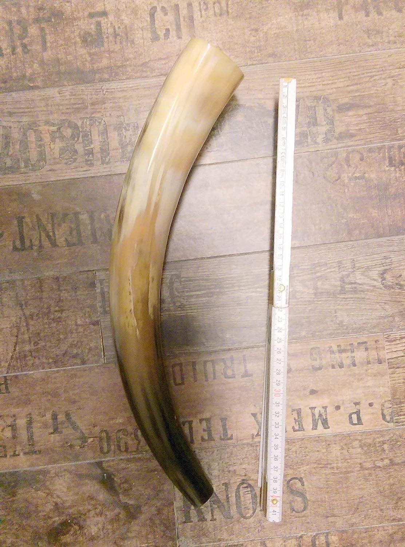 Blashorn,Rufhorn Hirschlocker 40-50 cm lang poliert,fix und fertig