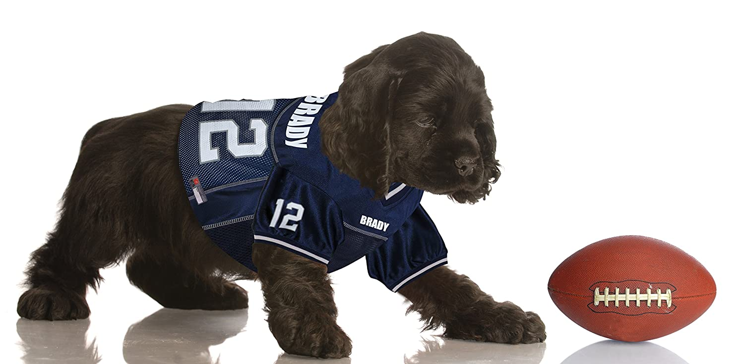 Amazon.com   NFLPA Dog Jersey - Tom Brady  12 Pet Jersey - NFL New England  Patriots Mesh Jersey 7e84ec41a