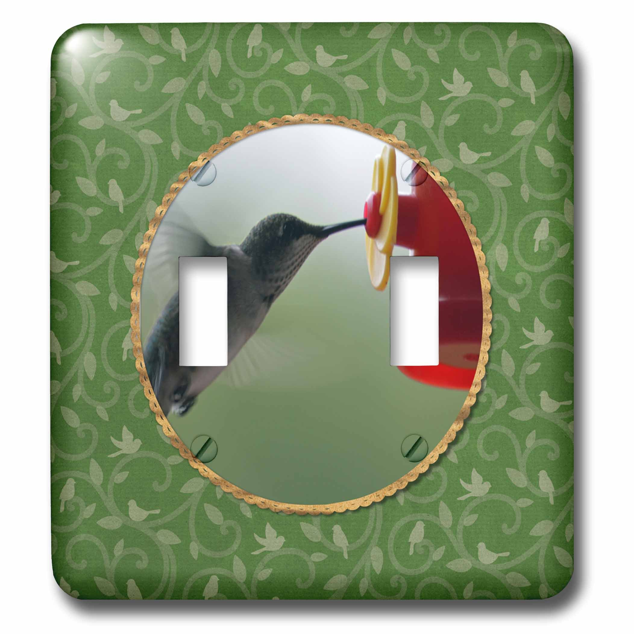 3dRose Beverly Turner Bird Photography - Hummingbird at Feeder in Round, Birds on Branches, Green - Light Switch Covers - double toggle switch (lsp_274408_2)