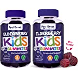 Elderberry Gummies for Kids by Feel Great Vitamin Co. (90 Servings) with Immune Support* | NO Gelatin, No Corn Syrup Plant & Pectin Based Formula | Vitamin C and Zinc | Sambucus Nigra Supplement (2Pk)