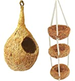 ZENRISE® Coir Bird Nest and Swing Toy for Small Birds Sparrows and Finches - Set of 2, Beige
