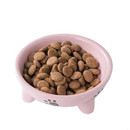 Amazon Com Dog Plates For Food And Water Ceramic Slow Feed Puppy
