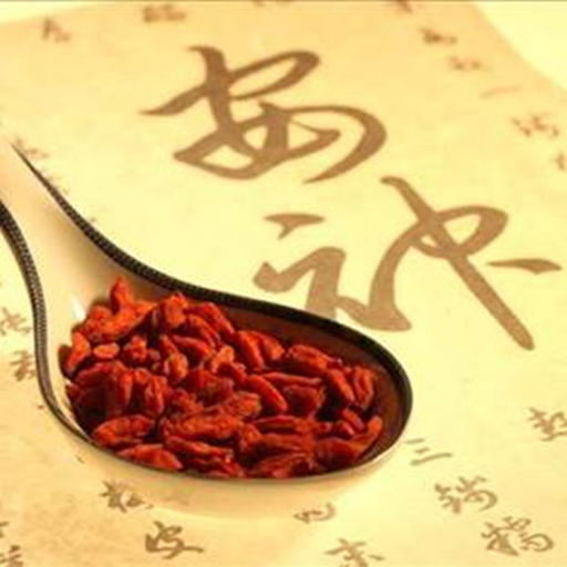 Health Treasure: the Wisdom of Traditional Chinese Medicine