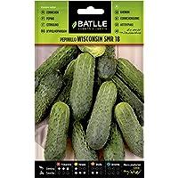 Semillas Hortícolas - Pepinillo Wisconsin SMR 18 - Batlle