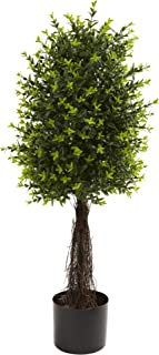 Nearly Natural 5413 Ixora Topiary UV Resistant Tree, 35-Inch, Green by Nearly Natural