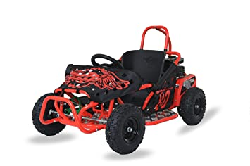 RiiRoo 4 Wheel Petrol Off Road Go Kart Buggy Outdoor Kids Ride On Go