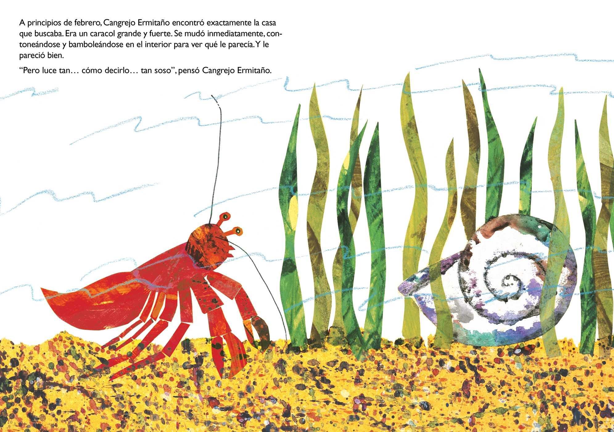 Una casa para Cangrejo Ermitaño (A House for Hermit Crab) (The World ...