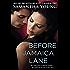 Before Jamaica Lane (On Dublin Street Book 3)