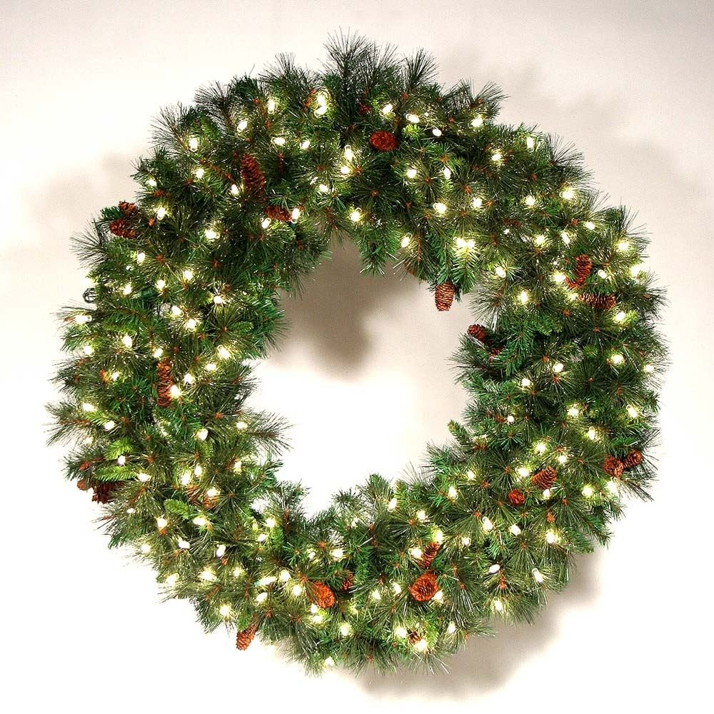 Amazon.com : Novelty Lights 50 Light LED Christmas Mini Light Set ...